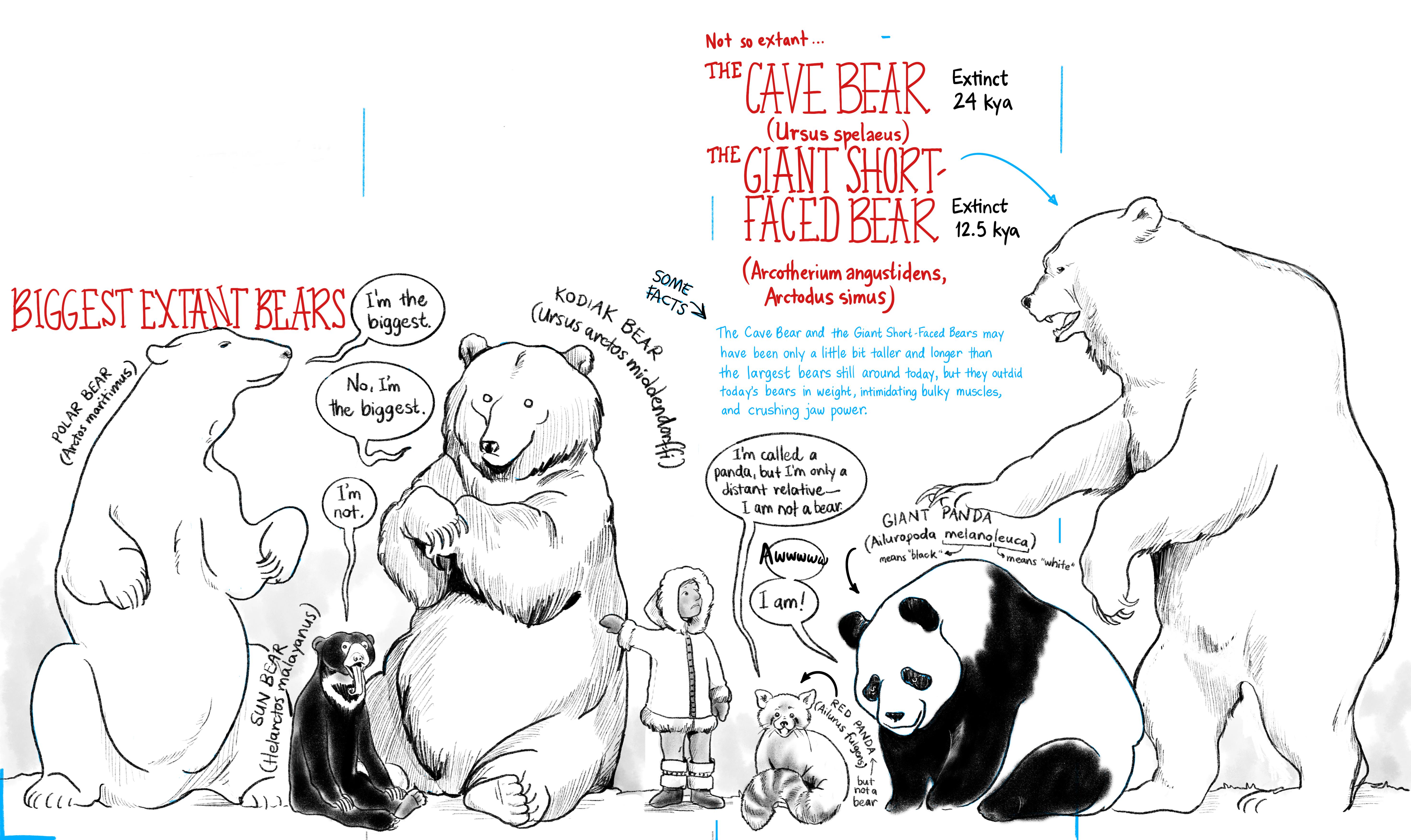 MEGA Megafauna: Bears and bearish critters