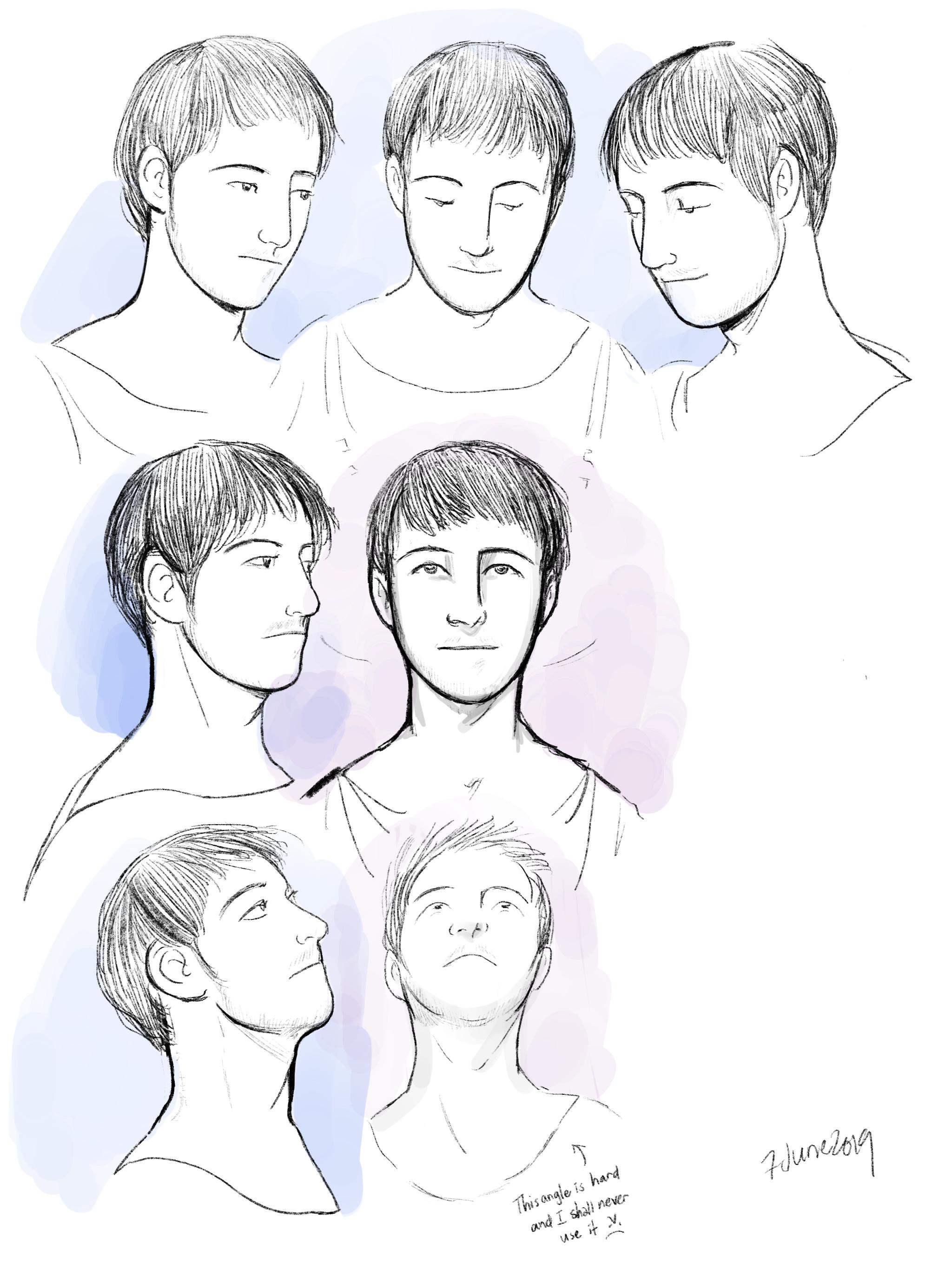 Head studies 2 (cont'd): Mus (older versions)